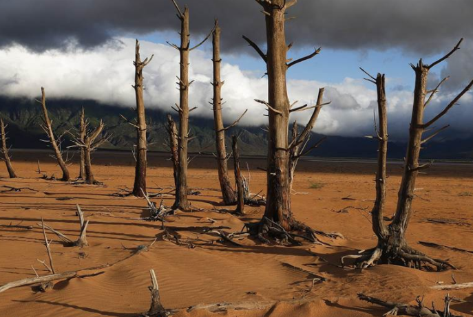 Cape Town Hates Israel So Much It Rejected Its Offer To End Drought Crisis